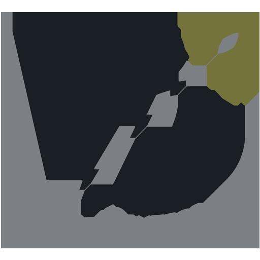 VB Reformes Integrals